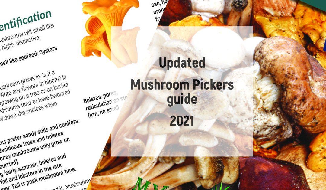 Updated Mushroom Guide for 2021